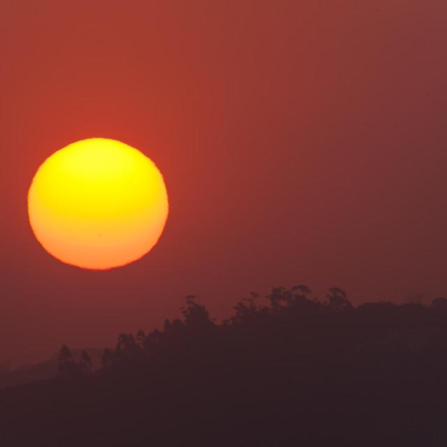"""""""Sun Landscape"""" stock image"""