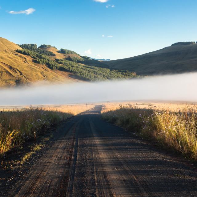"""Dirt Road Mist"" stock image"