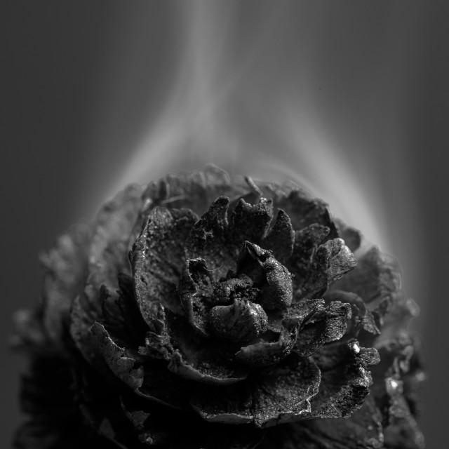 """""""Smoking cone"""" stock image"""