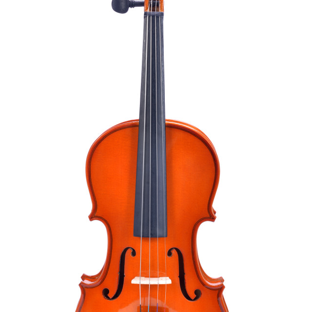 """violin on white"" stock image"
