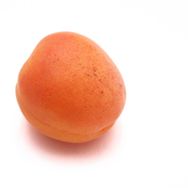 """Apricot on white background"" stock image"
