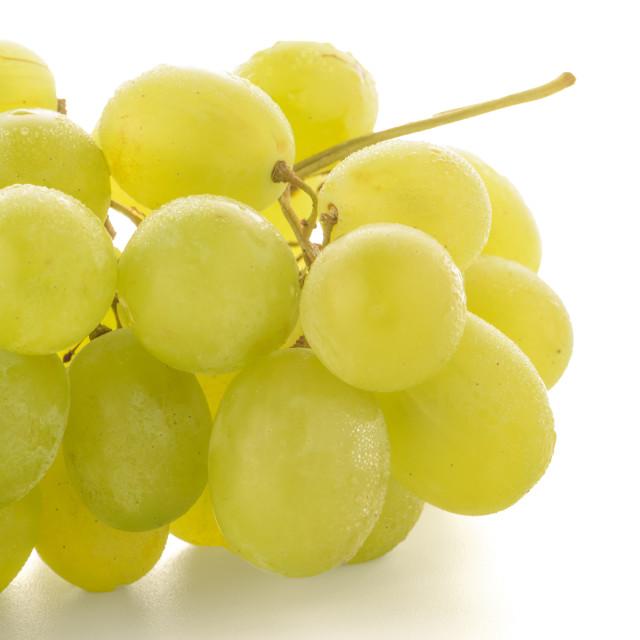 """Green grapes"" stock image"