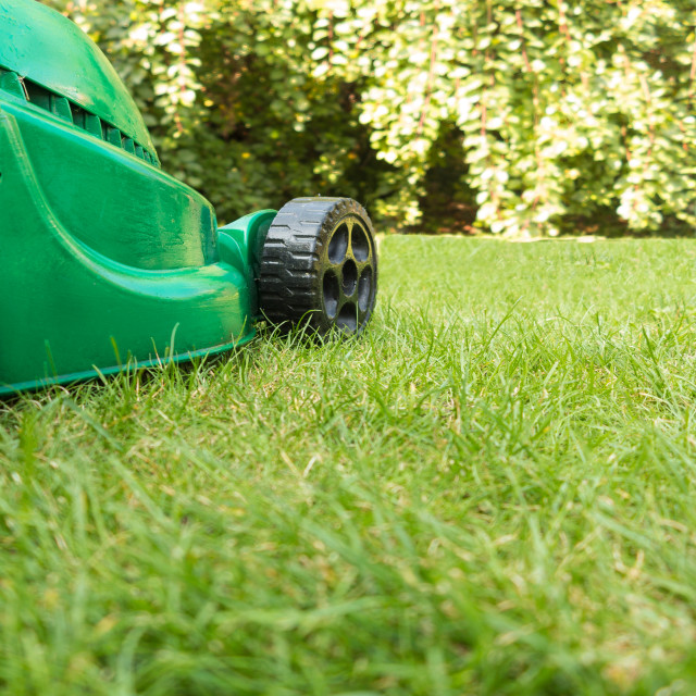 """Green Lawnmower on Grass"" stock image"