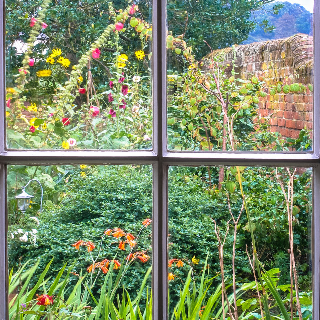 """Cottage Garden through an old sash window"" stock image"