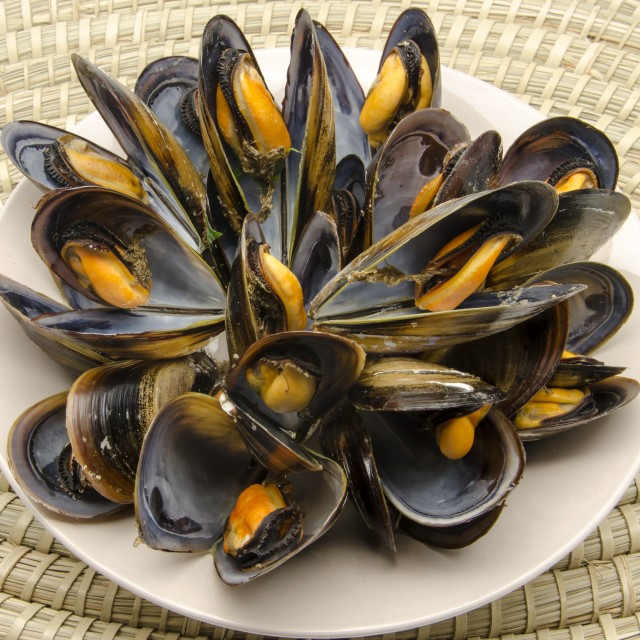 """""""Mussels in the shell"""" stock image"""