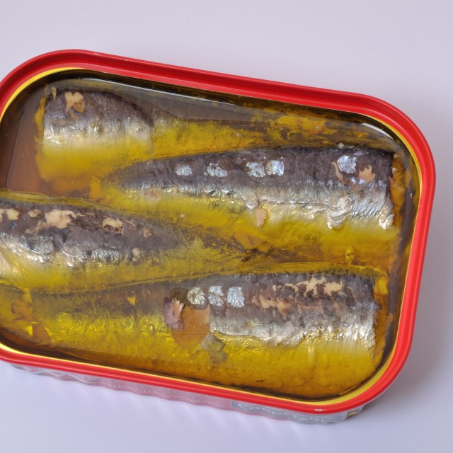 """Sardines in a tin"" stock image"