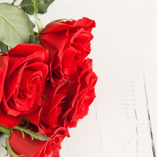 """Red roses for Valentine's Day"" stock image"