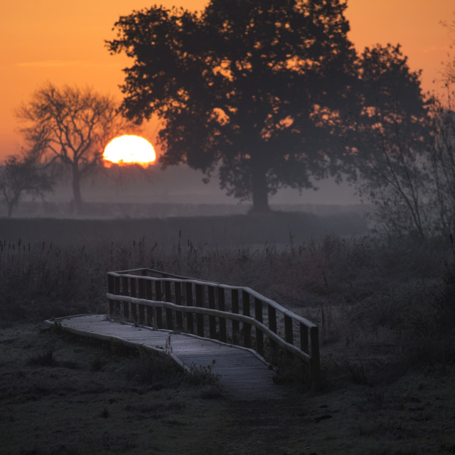 """Frosty sunrise"" stock image"