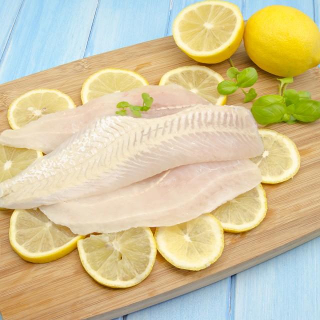 """fish"" stock image"