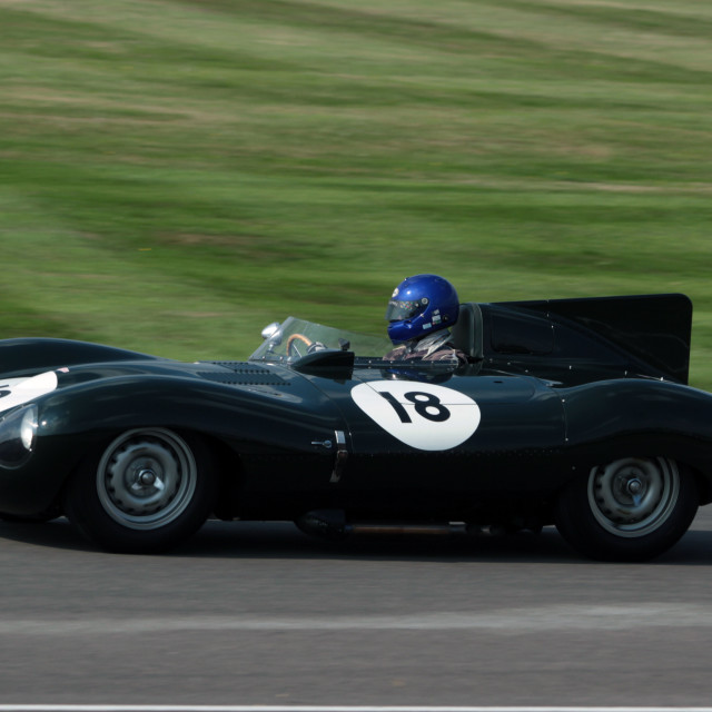 """Jaguar ""D"" Type at Goodwood Revival"" stock image"