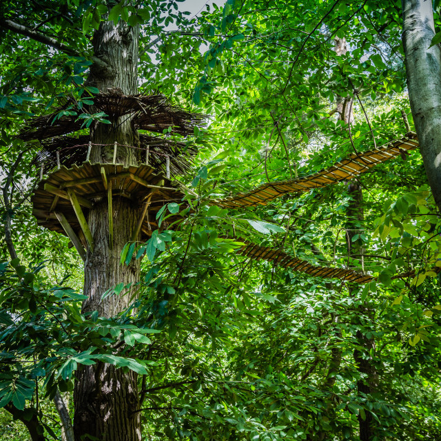 """Elven Treehouse"" stock image"