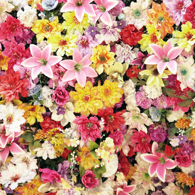 """""""lot of flowers"""" stock image"""