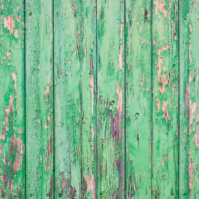 """""""Shabby green door"""" stock image"""