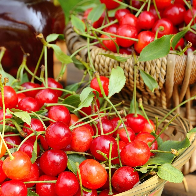 """Cherries."" stock image"