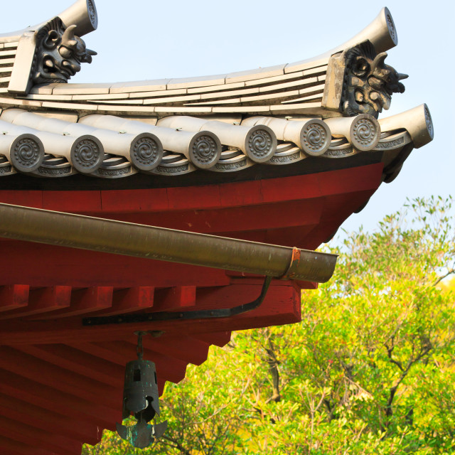 """""""Shinto temple roof"""" stock image"""