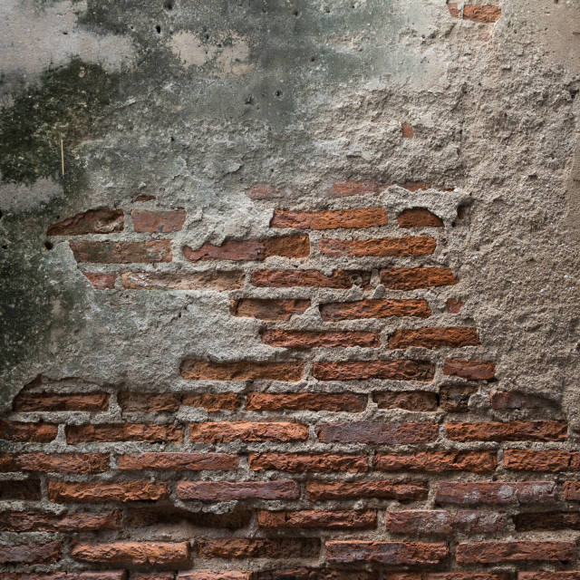 """Worn out brick wall with mold"" stock image"