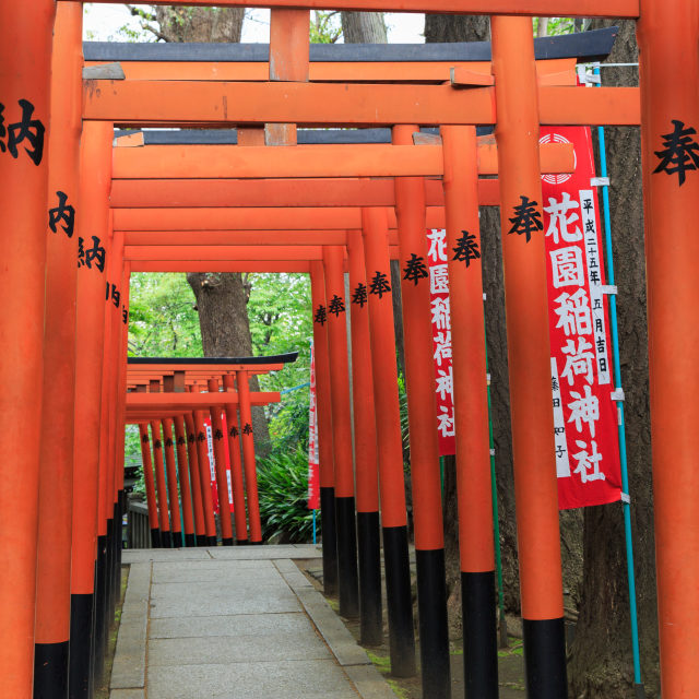 """Torii in Ueno"" stock image"
