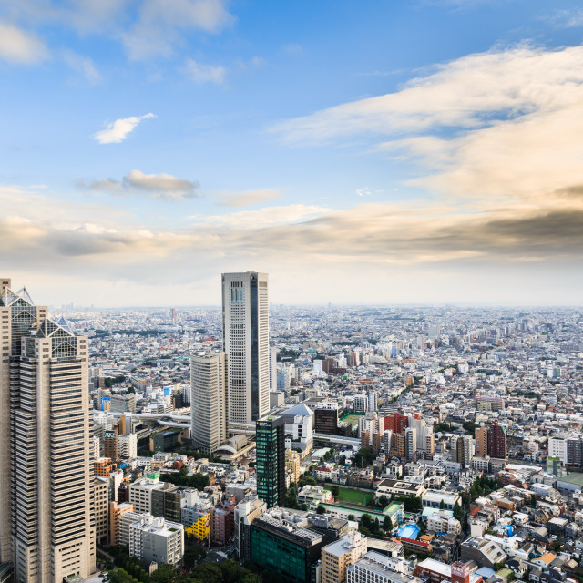"""View from Tokyo Metropolitan governmental building"" stock image"