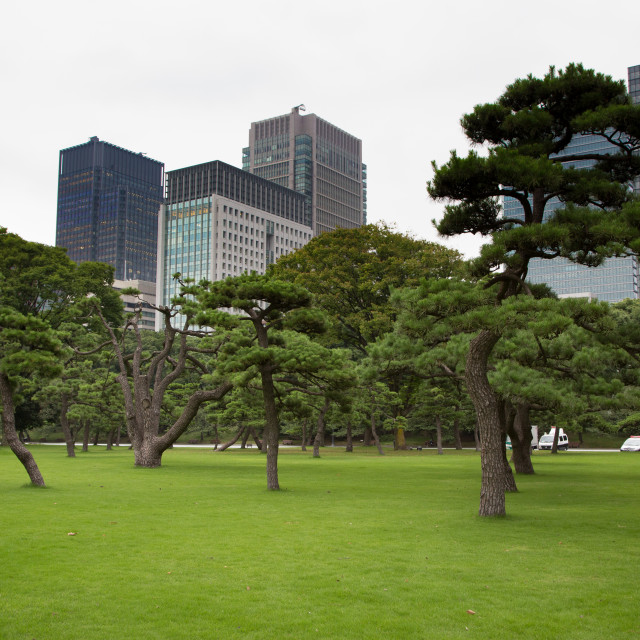 """Public park in Japan near imperial palace"" stock image"