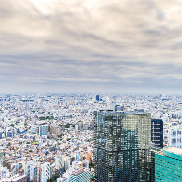 """""""Tokyo skyline at day time"""" stock image"""