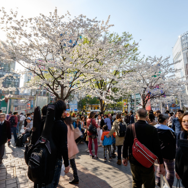 """SHIBUYA, TOKYO - 2014 APRIL 1: Shibuya is one of many fashion districts of Tokyo. It is famous for scrambled crossing."" stock image"