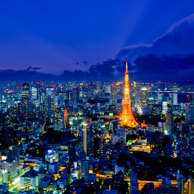 """Tokyo tower as seen with skyline"" stock image"