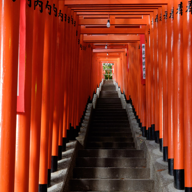 """TOKYO - CIRCA APRIL, 2014: In Shinto torii gates signify entrance to pure land of shrines on CIRCA April, 2014"" stock image"