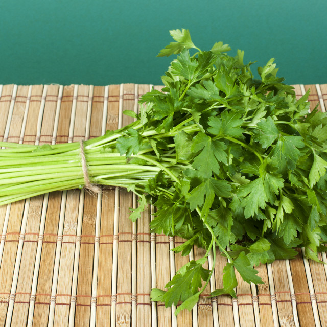 """Fresh bunch of green parsley"" stock image"