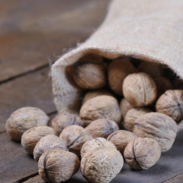"""Walnuts."" stock image"