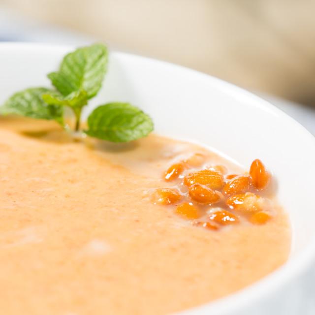 """""""Cream of lentils"""" stock image"""