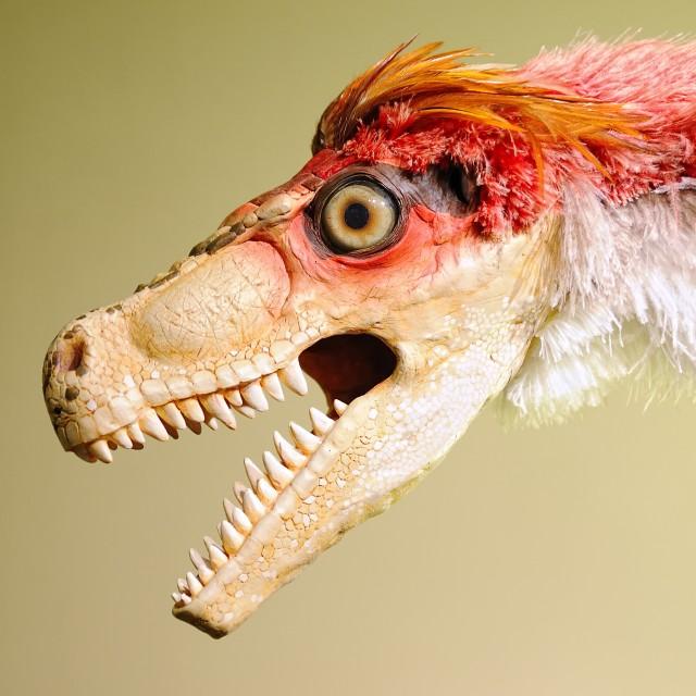 """Jurassic dinosaur"" stock image"