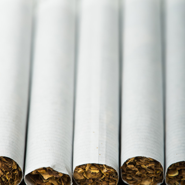 """Arranged in a row cigarettes"" stock image"
