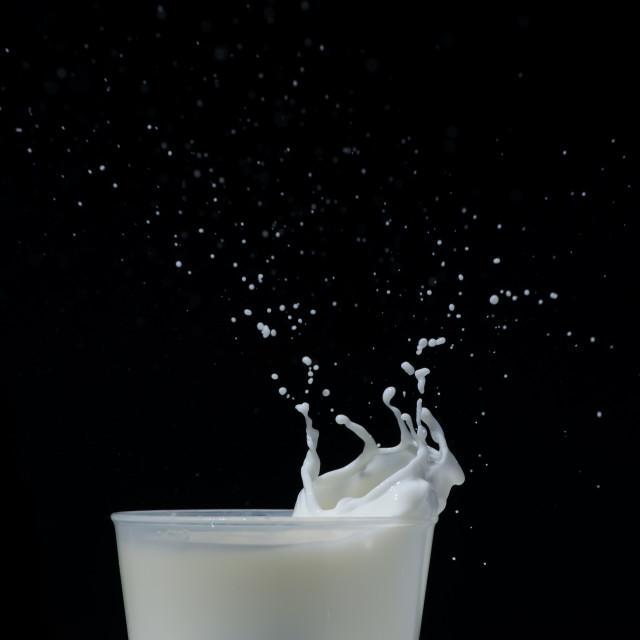 """""""Splashing milk black isolated"""" stock image"""