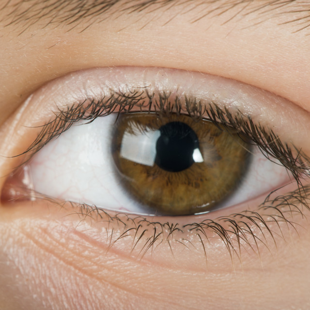 """Human eye"" stock image"