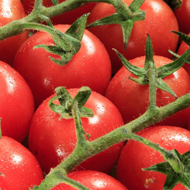 """""""Cherry tomato"""" stock image"""
