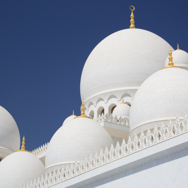 """""""Zayed grand mosque in UAE"""" stock image"""