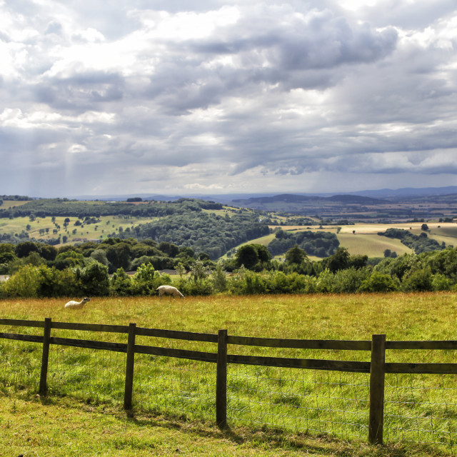 """English countryside"" stock image"