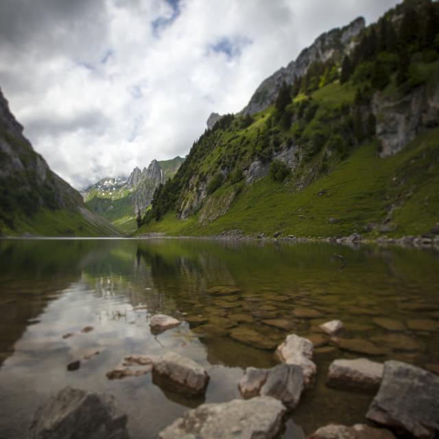 """""""Swiss Alps"""" stock image"""