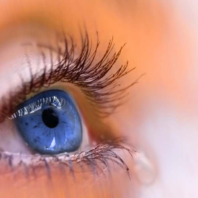 """""""blue vision"""" stock image"""