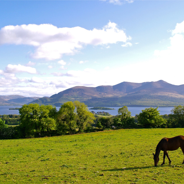 """Aghadoe Hill"" stock image"