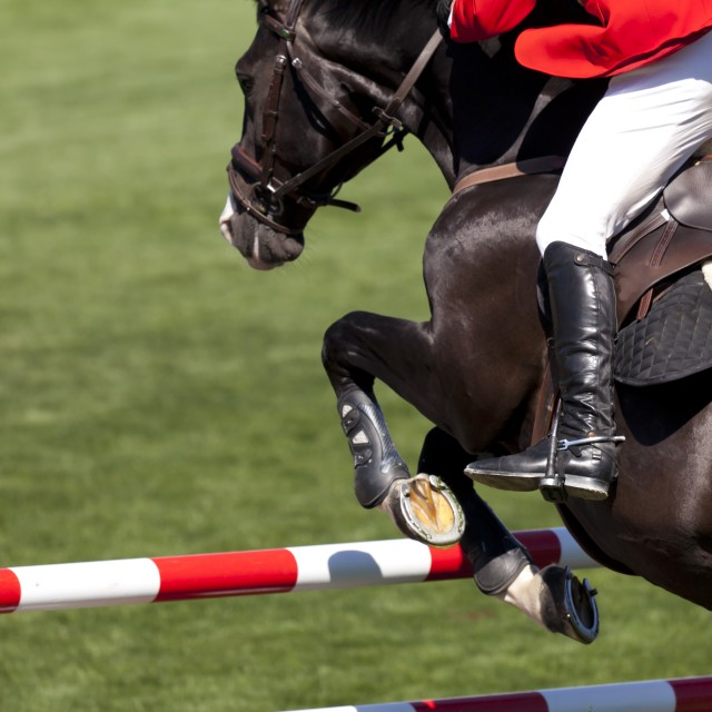 """Rider on a high jump competition"" stock image"