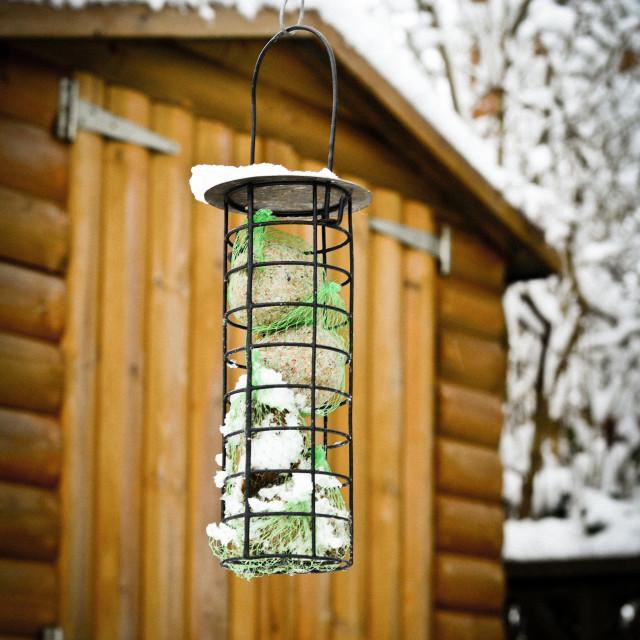 """Winter Food"" stock image"