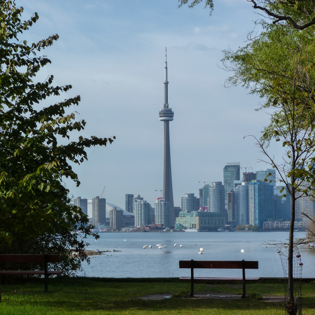 """""""Toronto"""" stock image"""