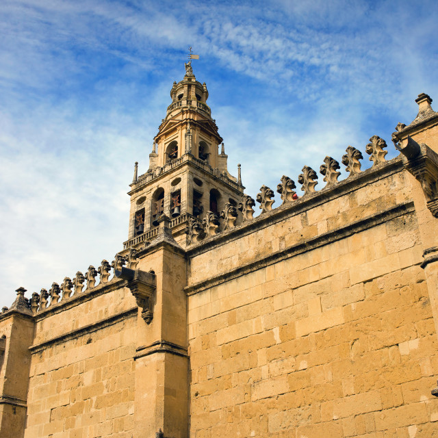 """Wall and Tower of the Mezquita"" stock image"