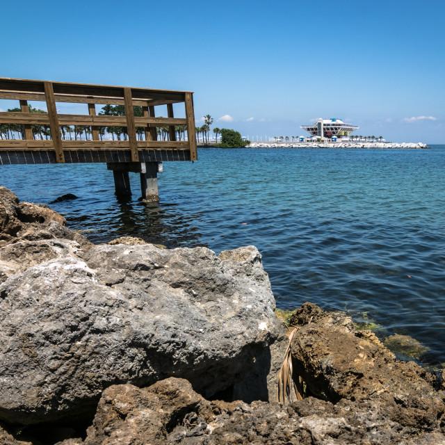 """""""Saint Peterburgs Pier"""" stock image"""