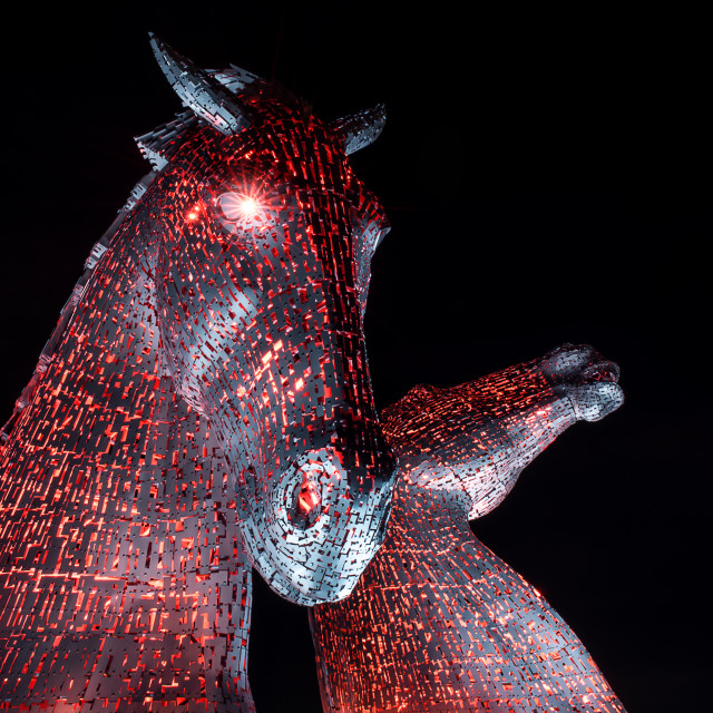 """Red Kelpies"" stock image"