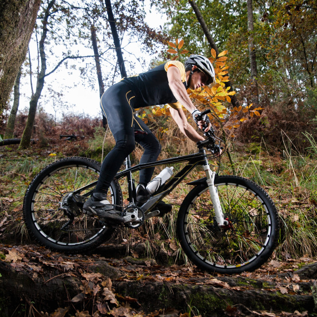 """Cyclist on a mountain bike riding in the forest"" stock image"