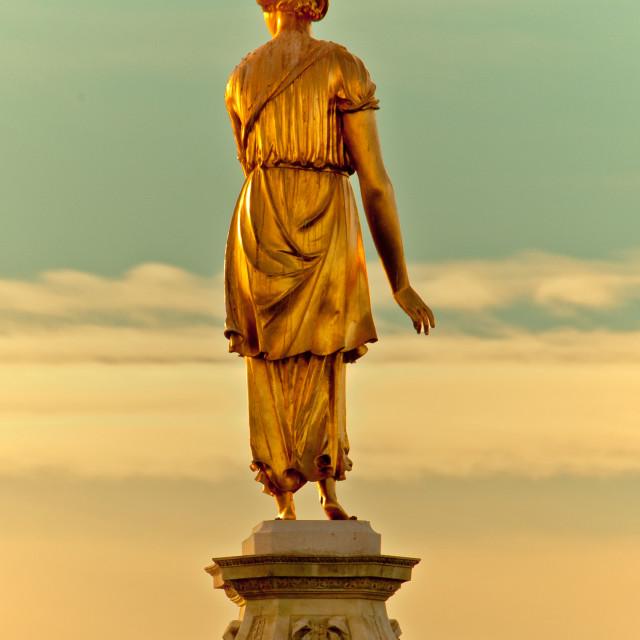 """Diana fountain statue and cormorant"" stock image"