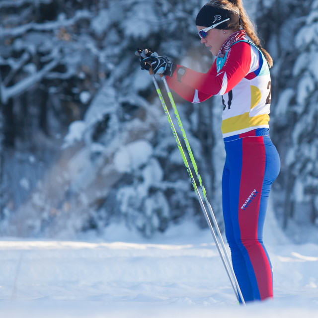 """Jämtkraft Ski Marathon 2015"" stock image"
