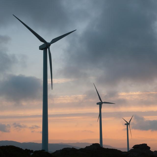 """Wind turbines at sunset"" stock image"